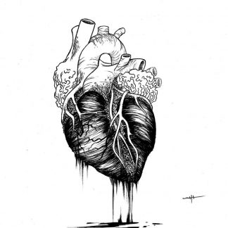"""Bleeding Heart"" Art Print. Drawing of a realist bleeding heart. Beware, too much kitch art can be bad for yout health"